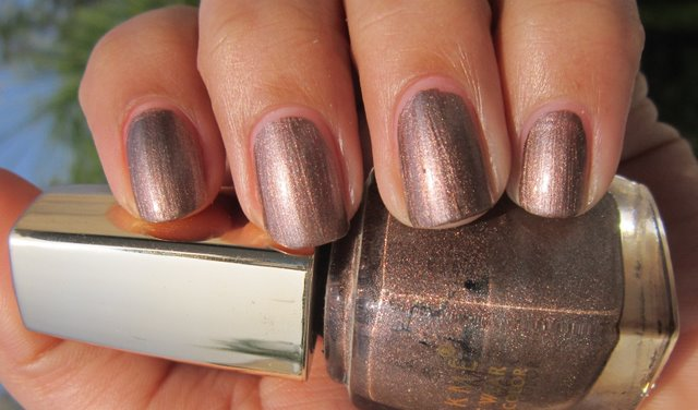 Two Fun Lakme Nail Polishes Berry Wine Metallic 241 March 7 2012 Polish